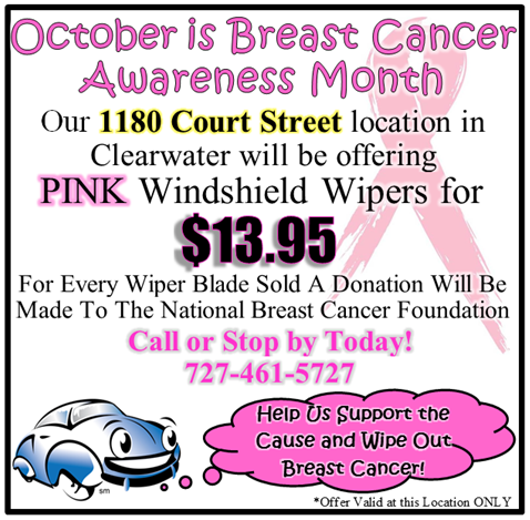 1180 Breast Cancer for Wipers Photo